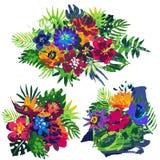 Raccolta di vettore dei mazzi dei fiori e delle piante tropicali e della struttura dipinta a mano illustrazione vettoriale