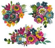Raccolta di vettore dei mazzi dei fiori e delle piante tropicali e della struttura dipinta a mano royalty illustrazione gratis