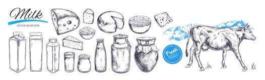 Raccolta di vettore dei prodotti lattier-caseario Mucca, prodotti lattiero-caseari, formaggio illustrazione di stock