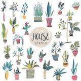 Raccolta di vettore delle piante della casa in vasi illustrazione vettoriale