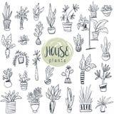 Raccolta di vettore delle piante della casa in vasi royalty illustrazione gratis