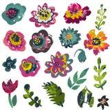 Raccolta di vettore delle piante e dei fiori con struttura dipinta a mano illustrazione vettoriale