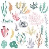 Raccolta di vettore delle piante subacquee variopinte della barriera corallina dell'oceano royalty illustrazione gratis