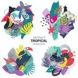 Raccolta di vettore delle piante tropicali, fiori uccelli, composizioni dipinte a mano in struttura illustrazione di stock