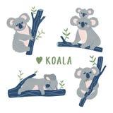 Raccolta disegnata a mano degli orsi di koala di scarabocchio Modello sveglio di progettazione della koala illustrazione vettoriale