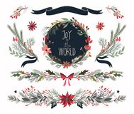 Raccolta disegnata a mano di Natale delle piante decorative Fotografie Stock