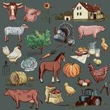 Raccolta disegnata a mano originale dell'azienda agricola Fotografia Stock