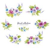 Raccolta floreale dell'acquerello con le disposizioni dei fiori dei fiori, delle foglie, dei rami e dei germogli di fiore royalty illustrazione gratis