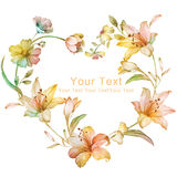 Raccolta floreale dell'illustrazione dell'acquerello i fiori hanno sistemato l'ONU una forma della corona perfetta Fotografia Stock Libera da Diritti