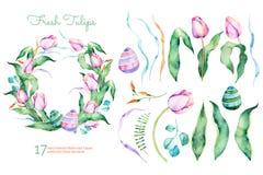 Raccolta floreale della molla delicata con i tulipani, foglie, rami, uova di Pasqua Fotografia Stock Libera da Diritti