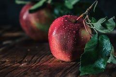 Raccolta fresca delle mele Tema della natura con l'uva rossa su fondo di legno Immagine Stock