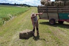 raccolta il trattore e dell'agricoltore del rimorchio Fotografie Stock Libere da Diritti
