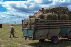 raccolta il trattore e dell'agricoltore del rimorchio Fotografia Stock
