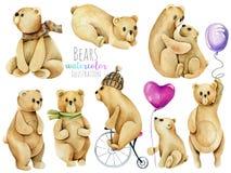 Raccolta, insieme delle illustrazioni sveglie degli orsi dell'acquerello illustrazione vettoriale