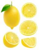 Raccolta isolata dei limoni Immagini Stock Libere da Diritti