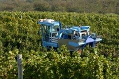 Raccolta meccanica dell'uva fotografie stock