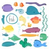 Raccolta a memoria d'immagine tropicale del pesce isolata Immagini Stock Libere da Diritti