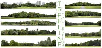 Raccolta molto alta di Treeline di definizione isolata su un BAC bianco fotografia stock libera da diritti