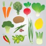 Raccolta organica delle verdure Immagini Stock Libere da Diritti