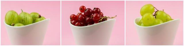 Raccolta orizzontale dei goosberries, dell'uva e del ribes rosso dentro Fotografie Stock