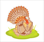 Raccolta/ringraziamento Turchia Fotografie Stock