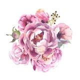 Raccolta romantica del fiore differente dell'acquerello Fotografie Stock Libere da Diritti