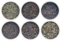 Raccolta storica del tè verde e del nero Fotografia Stock Libera da Diritti