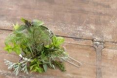 Raccolta sulle erbe della medicina di erbe in un setaccio del metallo su un fondo di legno Fotografia Stock