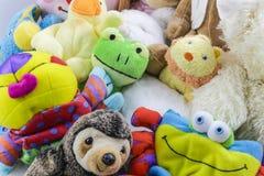 Raccolta sveglia degli animali farciti e dei giocattoli del ` s dei bambini Immagini Stock