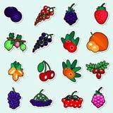 Raccolta variopinta delle icone della frutta del fondo blu di Autumn Berries Stickers Set On Fotografia Stock