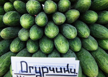 Raccolta verde fresca del cetriolo all'aperto sul mercato Immagine Stock Libera da Diritti
