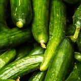 Raccolta verde fresca del cetriolo sulla fine del mercato Immagine Stock