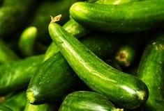 Raccolta verde fresca del cetriolo sulla fine del mercato Immagine Stock Libera da Diritti