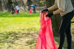 Raccolto d'uso del volontario della donna e dell'uomo sui rifiuti e spreco di plastica in parco pubblico Guanti dei giovani e let fotografia stock libera da diritti