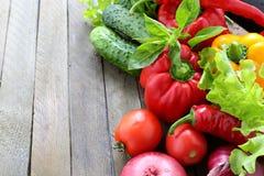 Raccolto degli ortaggi freschi e dei verdi sui bordi Fotografia Stock