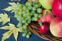 Raccolto dei frutti maturi - le mele, l'uva, le prugne, pere in grande piatto di legno su fondo nero, hanno decorato le foglie di Fotografie Stock