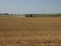 Raccolto dei raccolti del grano: mietitrebbiatrice nel campo Fotografie Stock Libere da Diritti
