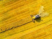 Raccolto del giacimento del seme di ravizzone Fotografie Stock