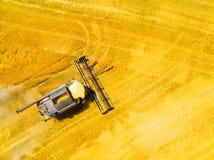Raccolto del giacimento di grano  immagini stock libere da diritti