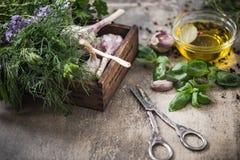 Raccolto del giardino delle erbe e delle spezie fresche Fotografia Stock