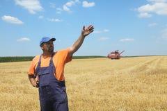Raccolto del grano Immagine Stock Libera da Diritti