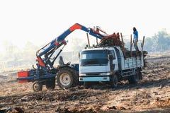 raccolto del trasporto del camion della canna da zucchero Fotografia Stock