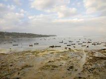 Raccolto dell'alga di mattina, Lembongan Indonesia Immagini Stock Libere da Diritti