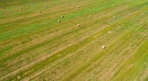 Raccolto dell'erba su un campo immagini stock libere da diritti