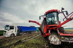 Raccolto dell'escavatore e del camion fuori Fotografie Stock Libere da Diritti
