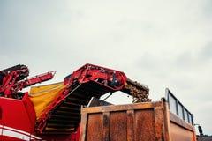 Raccolto dell'escavatore e del camion fuori Fotografia Stock