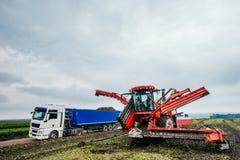 Raccolto dell'escavatore e del camion fuori Immagini Stock Libere da Diritti