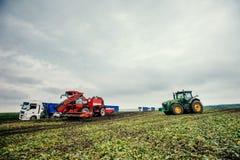 Raccolto dell'escavatore e del camion fuori Fotografia Stock Libera da Diritti