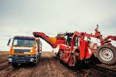 Raccolto dell'escavatore e del camion fuori Immagini Stock