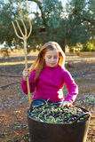 Raccolto della ragazza del bambino dell'agricoltore del raccolto delle olive Fotografia Stock